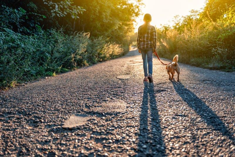 Маленькая девочка идя с ее собакой на дороге стоковое фото rf