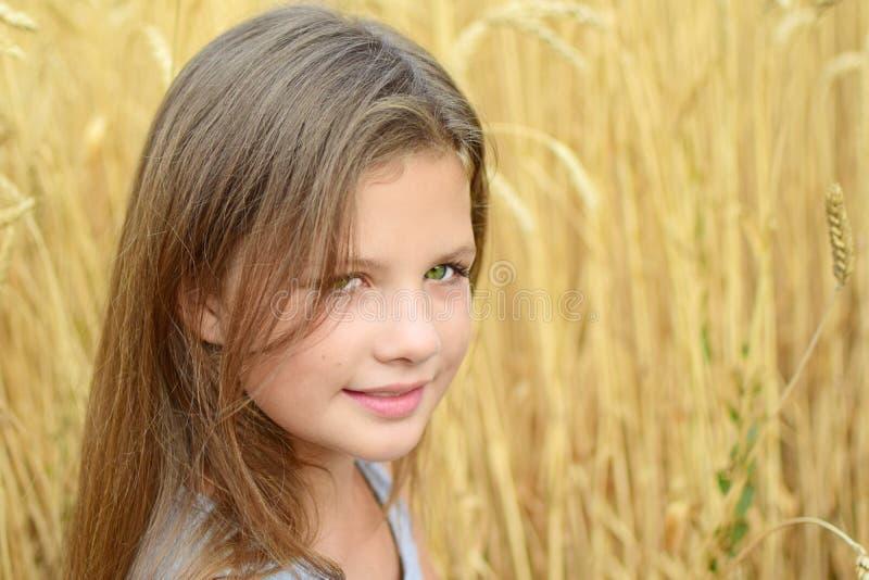 Маленькая девочка конца-вверх с глазами длинных волос зелеными в золотом летнем дне поля рож Концепция очищенности, роста, счасть стоковое изображение rf