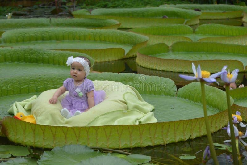 Маленькая девочка на супер лист стоковая фотография