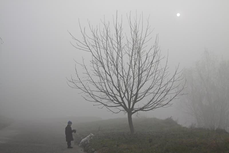 Маленькая девочка при ее собака идя в туман тайны стоковое изображение rf