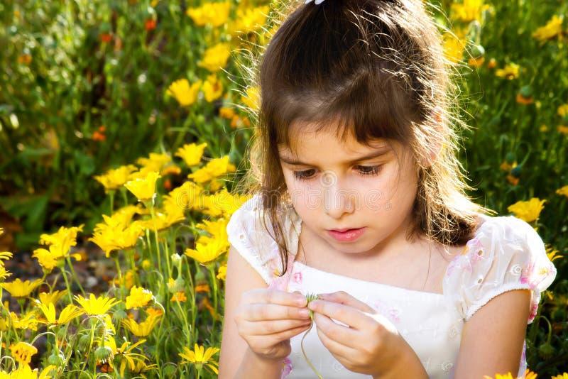 Маленькая девочка расследует цветок стоковое изображение rf