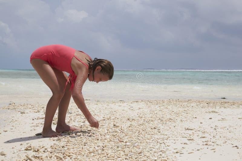 Маленькая девочка собирая раковины на пляже, конец моря вверх стоковые фото