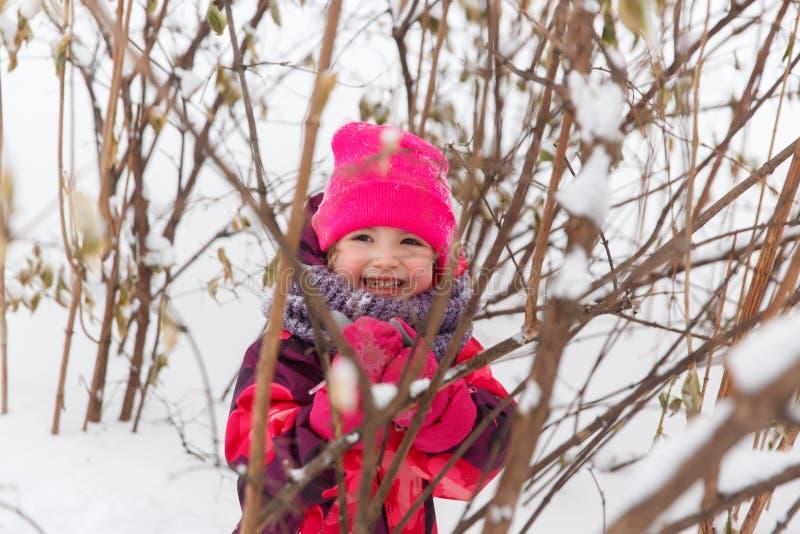 Маленькая девочка среди кустов зимы стоковое фото rf