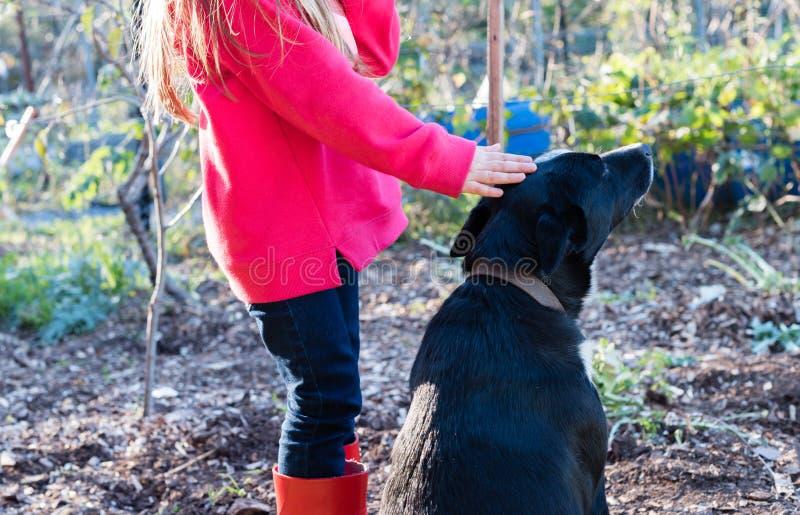 Маленькая девочка patting собака стоковое изображение