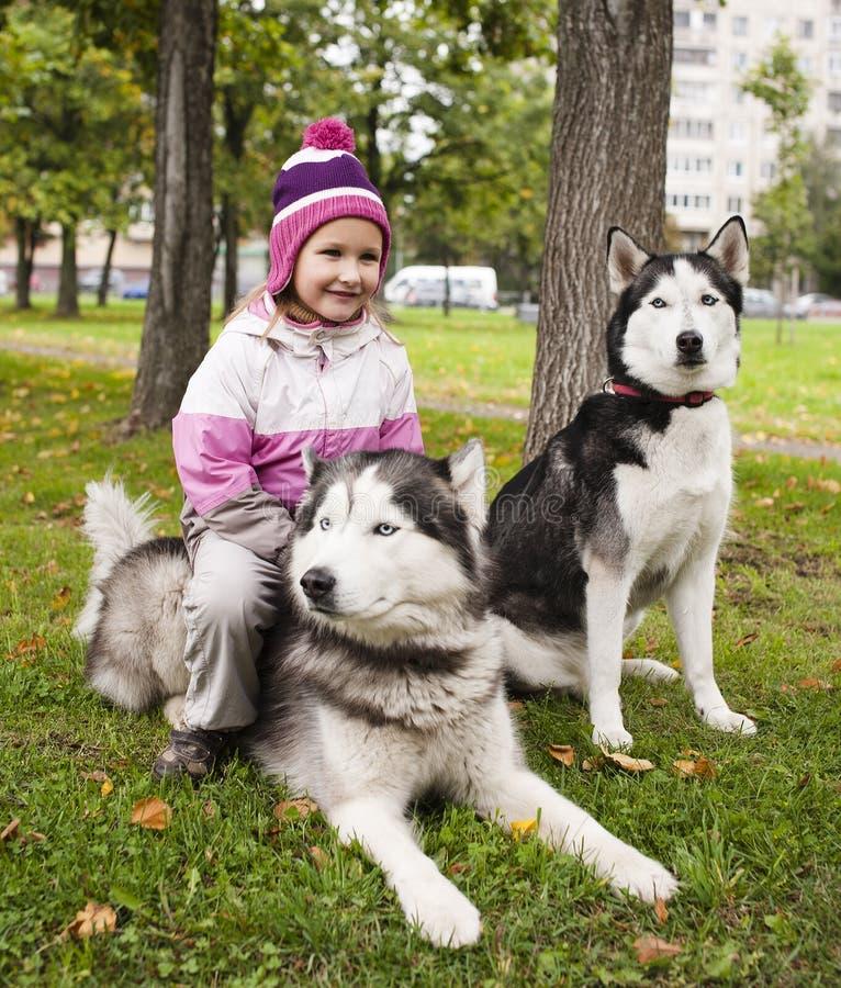 Маленькая милая девушка с осиплой собакой снаружи стоковое фото rf