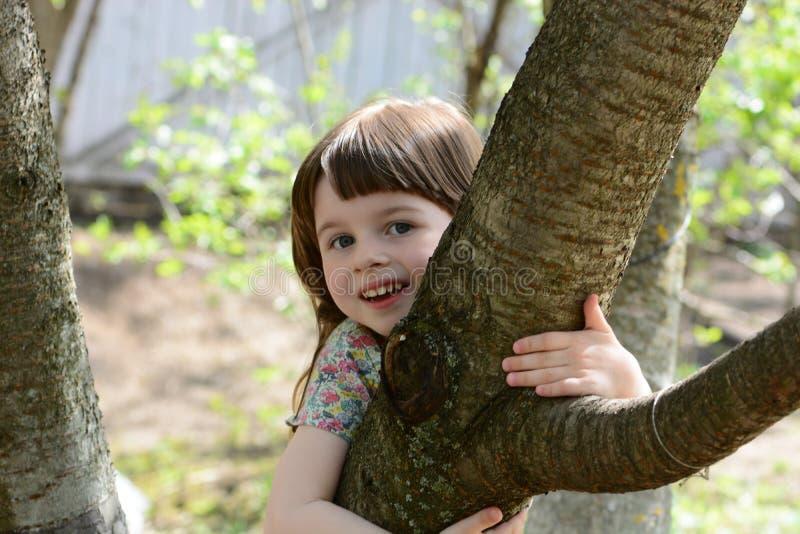 Маленькая обезьяна на дереве стоковые изображения rf