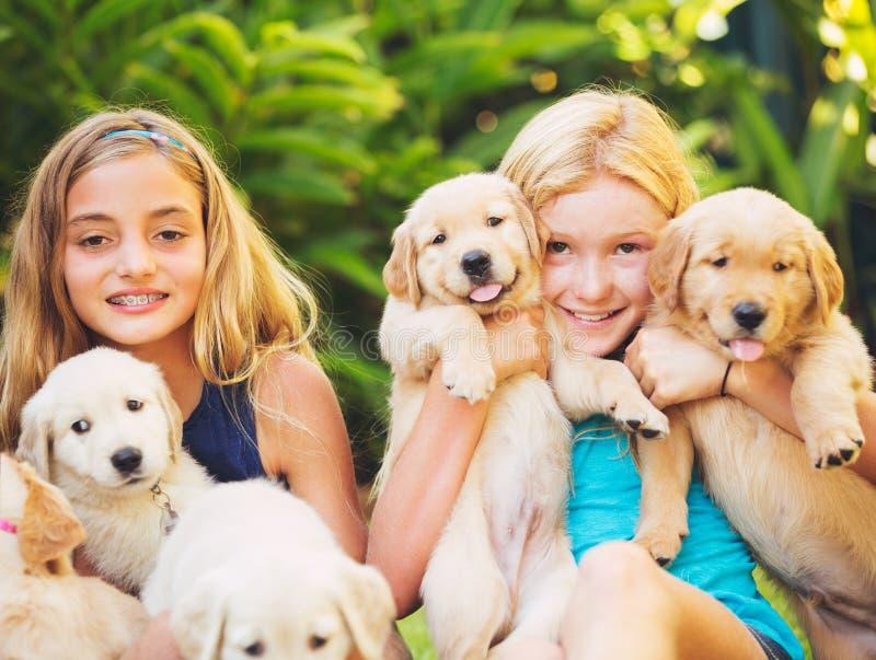 Маленькие девочки с щенятами младенца стоковые изображения
