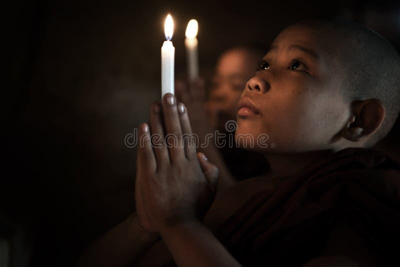Маленькие монахи моля стоковое фото rf