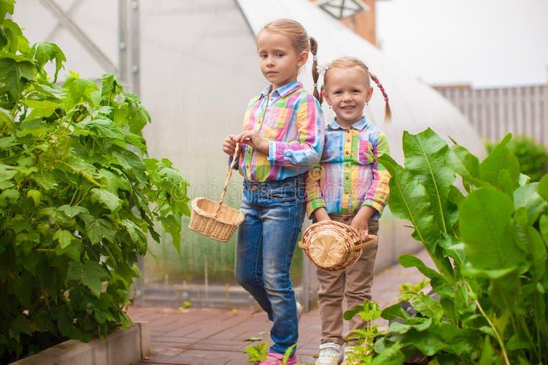 Download Маленькие прелестные девушки с корзиной сбора около парника Стоковое Фото - изображение насчитывающей красивейшее, счастливо: 40586176