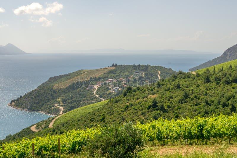Download Маленький город и Vinyards в Хорватии Стоковое Фото - изображение насчитывающей городки, среднеземноморск: 81809712