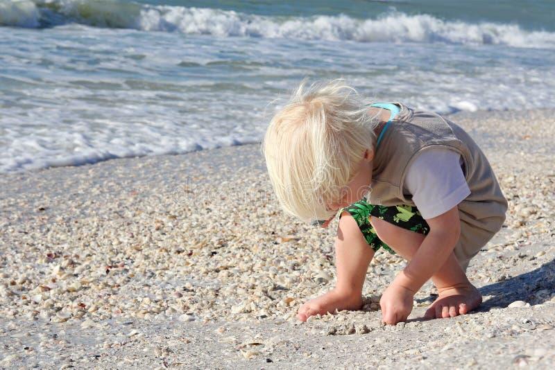 Маленький ребенок выбирая вверх Seashells на пляже океаном стоковое фото rf