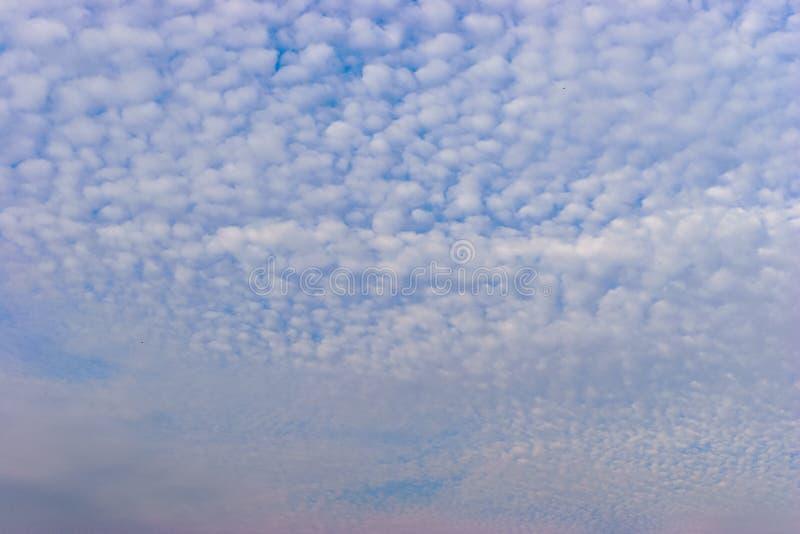 Малые белые облака кумулюса в голубом небе стоковые изображения