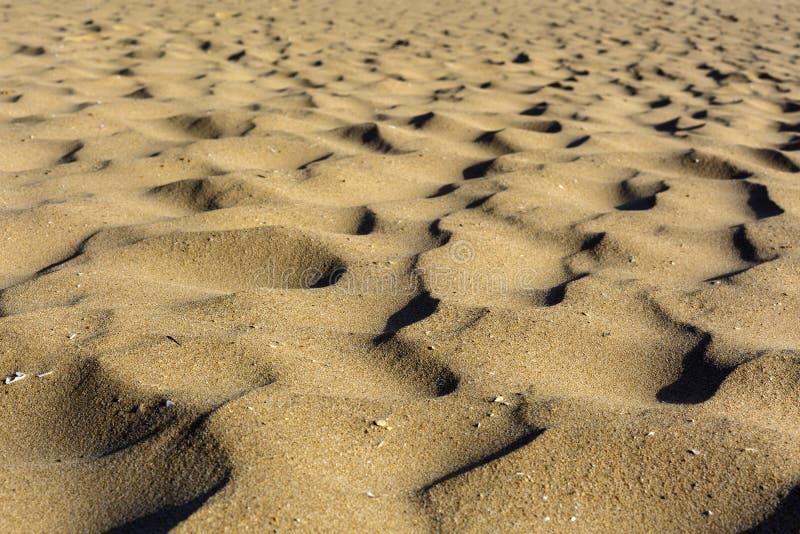 Малые песчанные дюны на пляже стоковые изображения