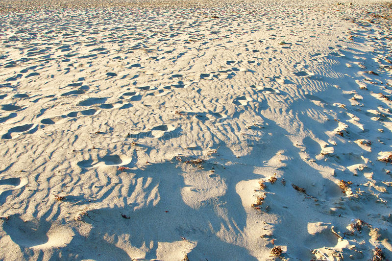 Малые песчанные дюны на пляже стоковые фотографии rf