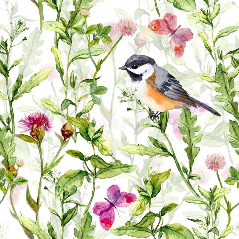 Малые цветки луга птицы весной, бабочки Повторенная картина акварель стоковая фотография