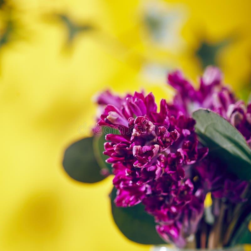Малый букет цветка стоковая фотография rf