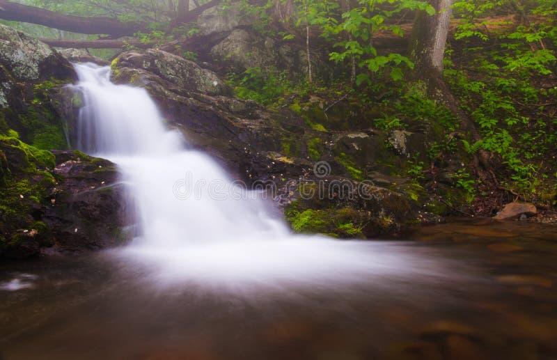 Малый водопад на реке Doyle в национальном парке Shenandoah, VI стоковые изображения