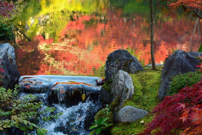Малый водопад над утесами на крае пруда с отражениями осени в воде стоковая фотография