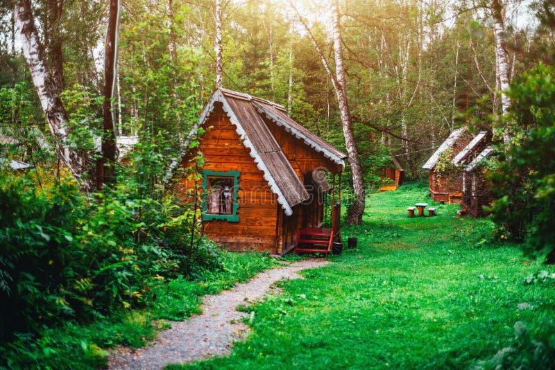 Малый деревянный дом в солнечном лесе района Алтай стоковая фотография