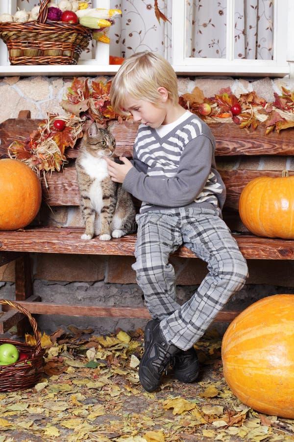 Малый мальчик с котом стоковые фотографии rf