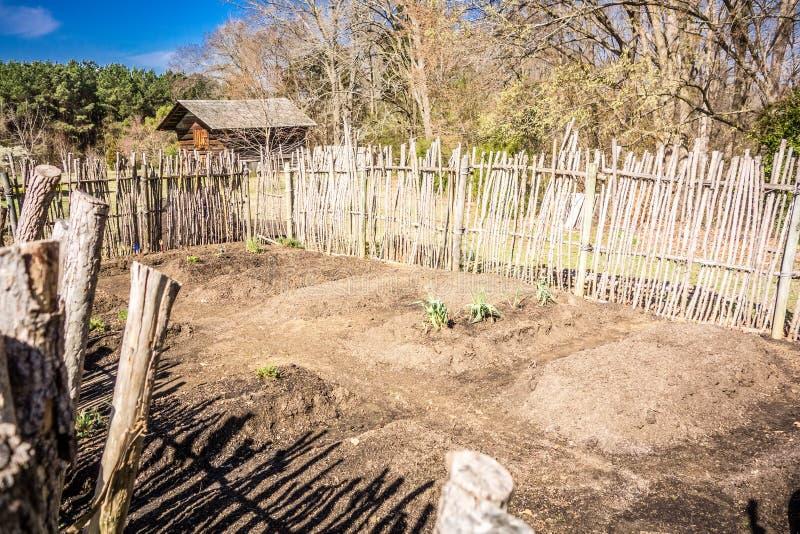 Малый огород с поднятыми кроватями в ограженной задворк стоковое изображение rf