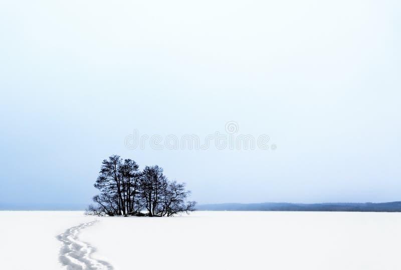 Малый остров в зиме стоковые фото