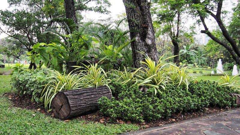 Малый парк в саде стоковое изображение rf