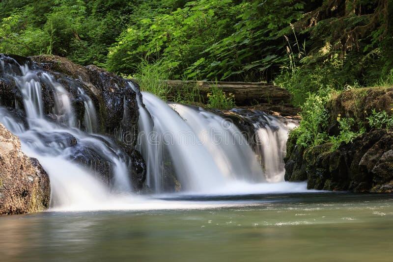 Малый парк штата падений серебра падений стоковое фото