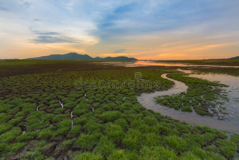 Малый путь воды с маленькой травой над великолепной землей, естественным ландшафтом и предпосылкой неба захода солнца стоковая фотография
