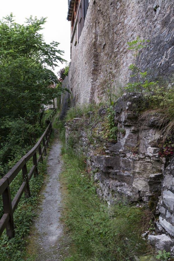 Малый путь с деревянным поручнем стоковая фотография