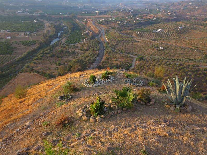 Малый сад вершины холма стоковое фото rf