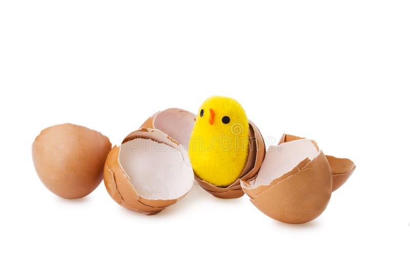 Малый цыпленок приходя из коричневого яичка стоковые изображения
