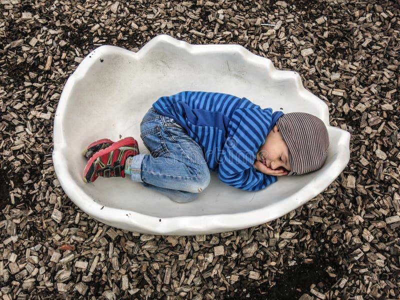 малыш eggshell стоковые изображения