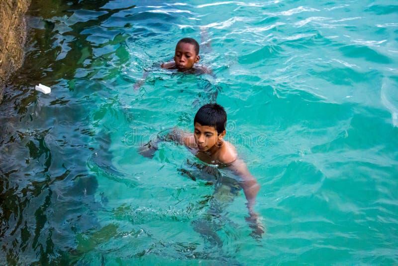 мальчики плавая стоковое изображение rf