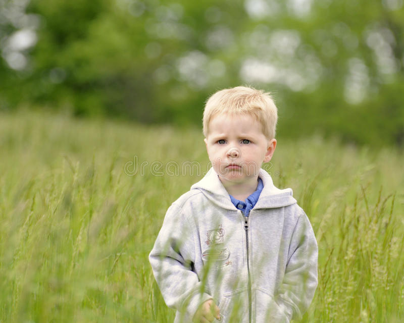 Мальчик в высокорослых gras стоковое изображение rf