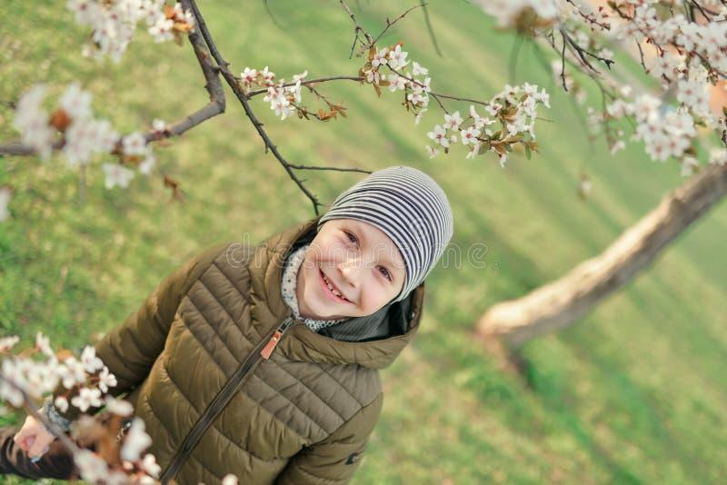 Мальчик в зацветая саде стоковые фотографии rf