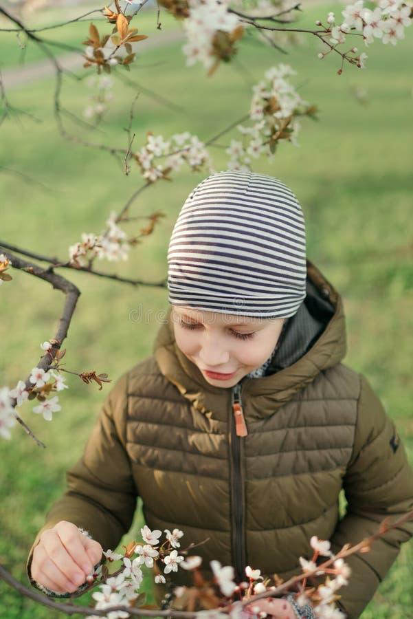 Мальчик в зацветая саде стоковая фотография