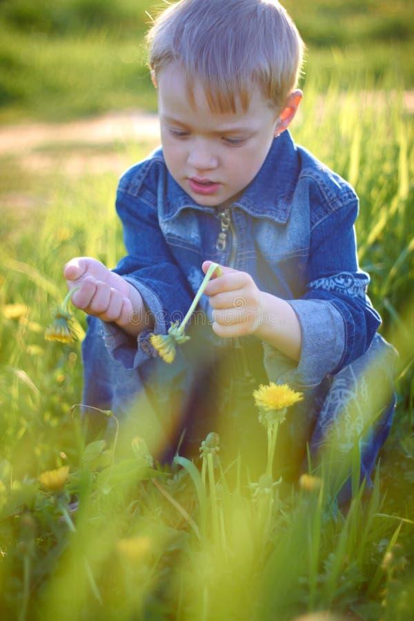 Мальчик в крышке играя outdoors в лете на солнечный теплый день, траве, зеленых цветах, природе стоковая фотография