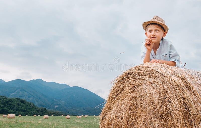 Мальчик в шляпе sraw лежа на крене сена стоковые изображения