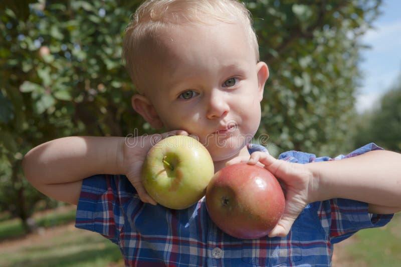 Мальчик держа здоровые яблока стоковые фотографии rf