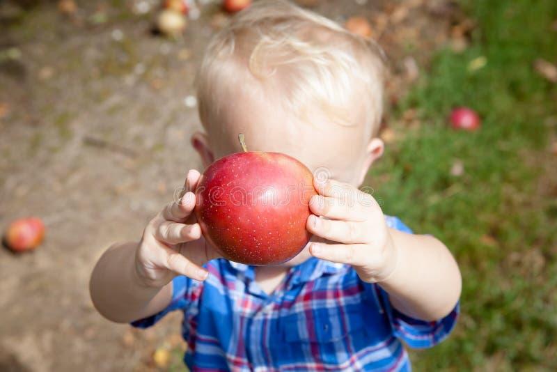 Мальчик держа красное Яблоко стоковая фотография