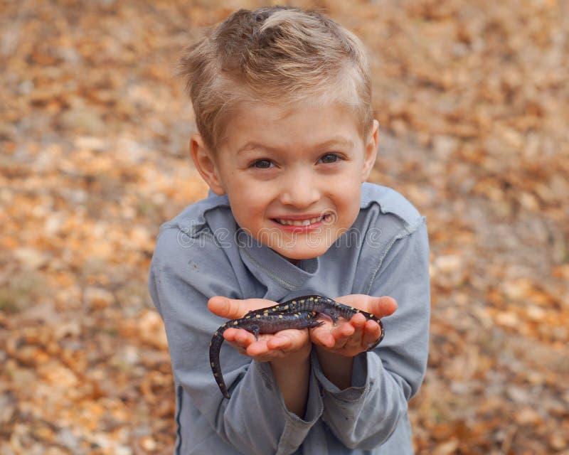 Мальчик держа саламандров стоковое фото rf