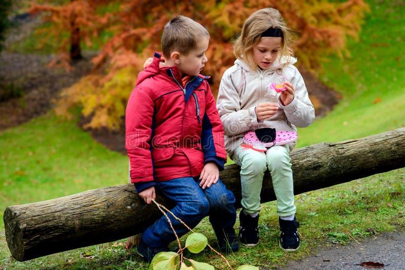Мальчик и девушка сидя совместно стоковая фотография rf