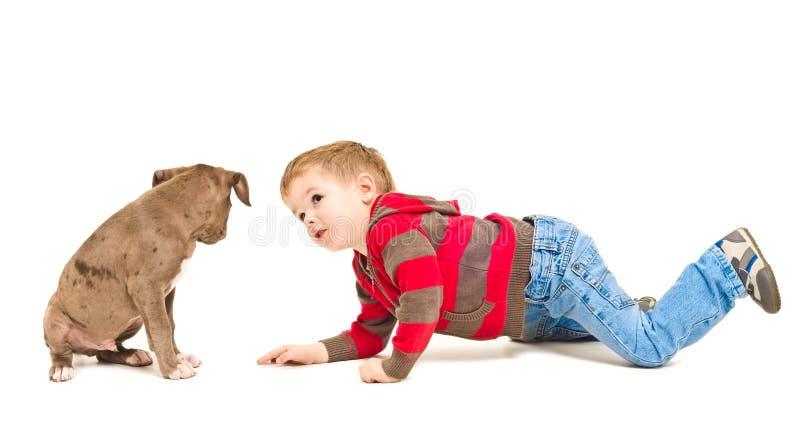 Мальчик и щенок смотря один другого стоковые изображения rf