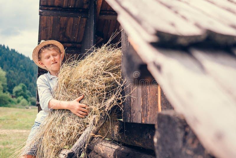 Мальчик кладет сено в сеновал стоковое фото rf