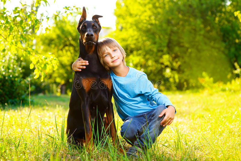 Мальчик обнимает его любимые собаку или doberman в лете стоковые фотографии rf