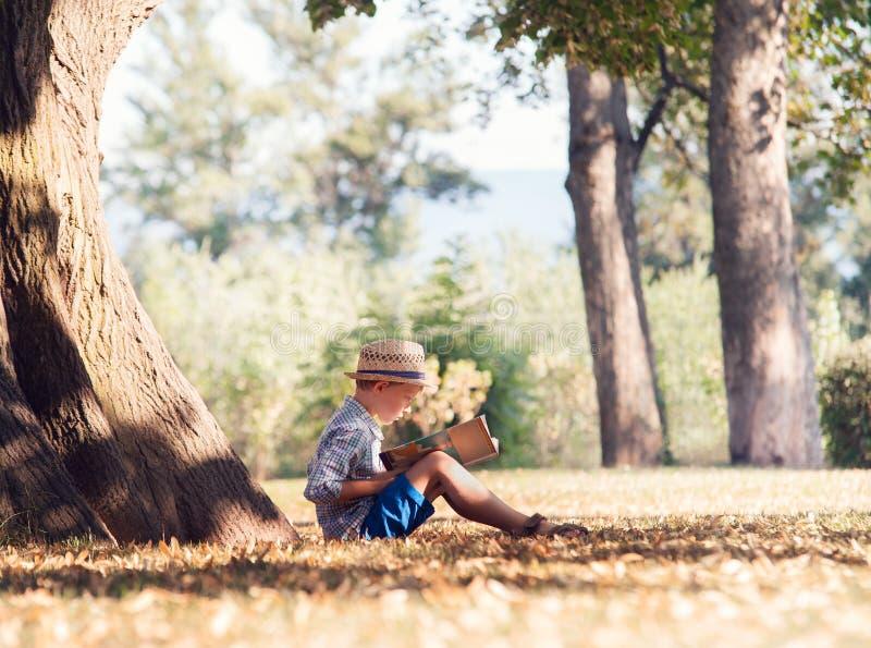 Мальчик прочитал книгу в тени дерева в солнечном дне стоковое фото