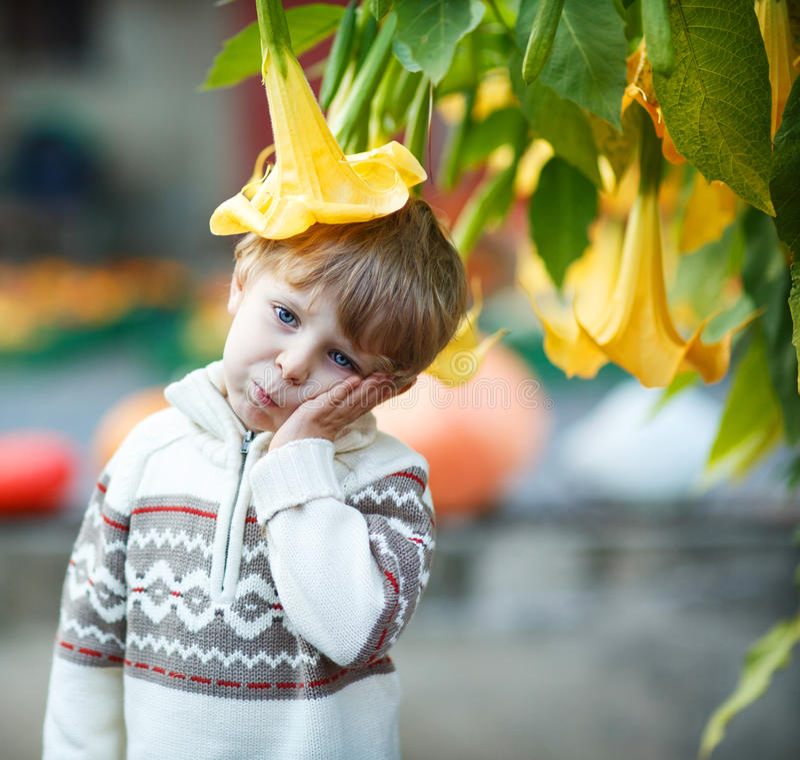 Мальчик с большим желтым цветком стоковое изображение rf