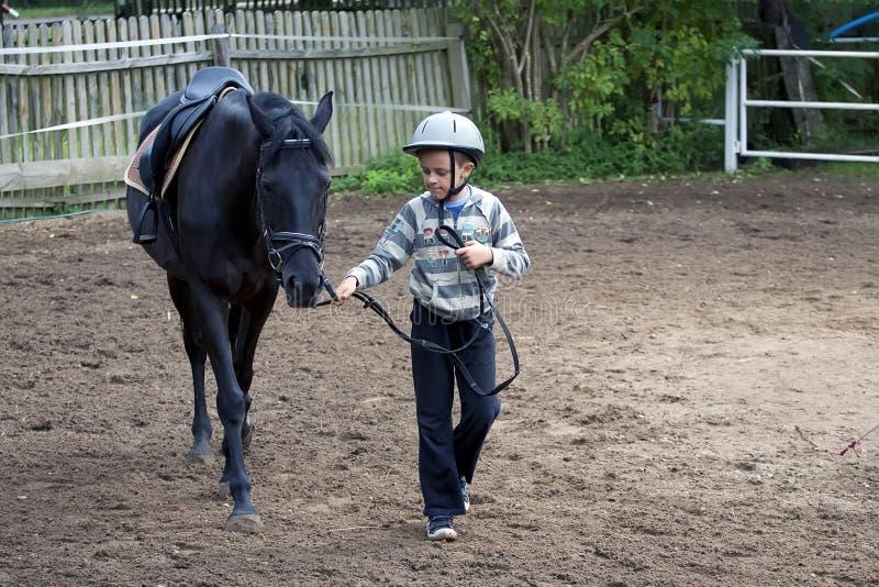 Мальчик с лошадью стоковая фотография rf