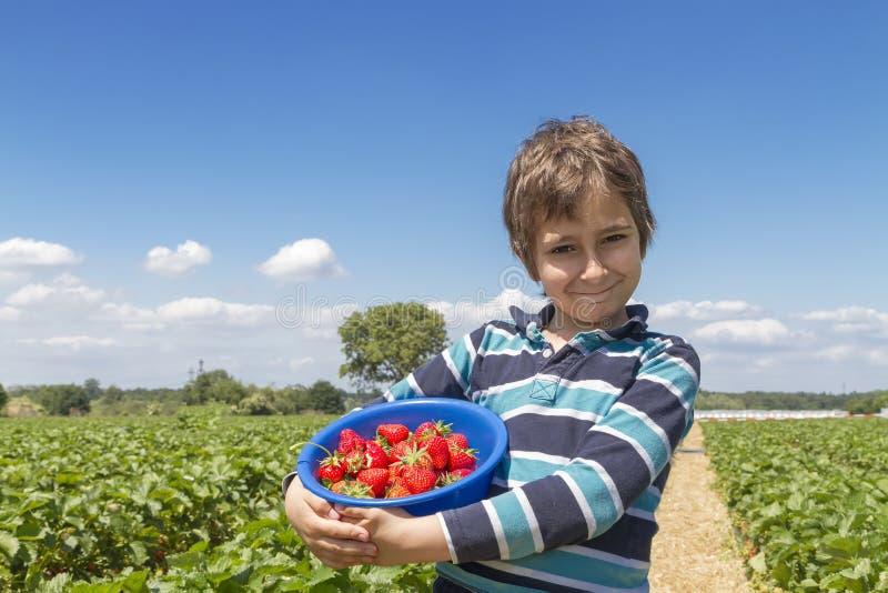 Мальчик с шаром клубник стоковые изображения